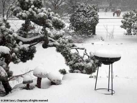 snowhorse3739.jpg