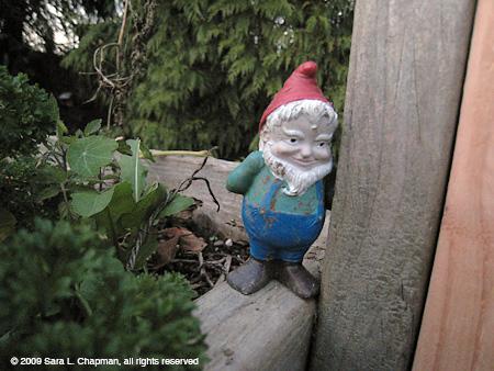 gnomeb7085.jpg