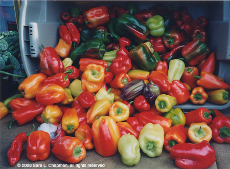 peppers96.jpg