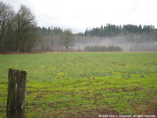 field0238.jpg