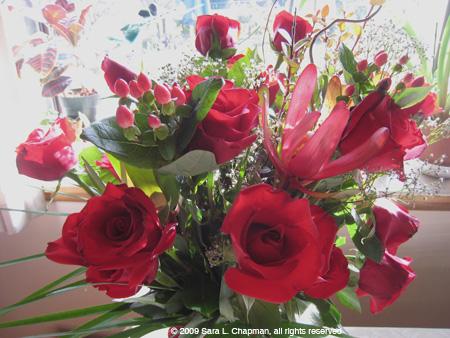roses4595.jpg