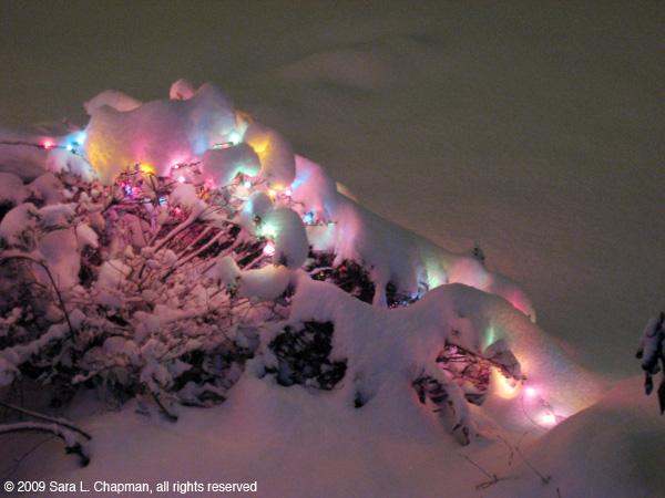 snowlights3926.jpg