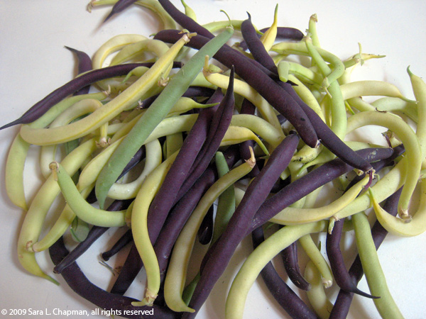 how to make fresh string beans
