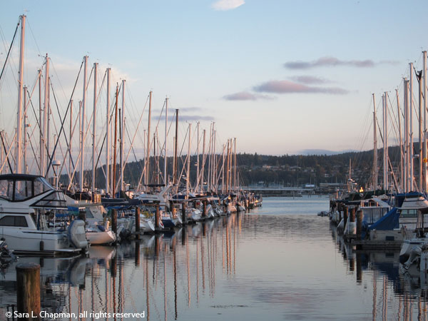 boats, marina, sunset, dusk, water, masts, dawn, Cap Sante marina, Anacortes