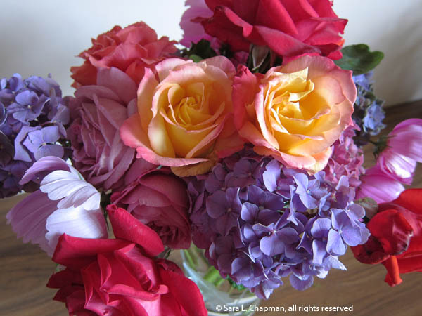 purple hydrangeas, broadway rose, cosmos, garden bouquet