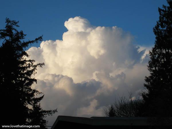 big, huge, white, cumulus cloud, blue sky, sunshine, trees, silhouette, house roof