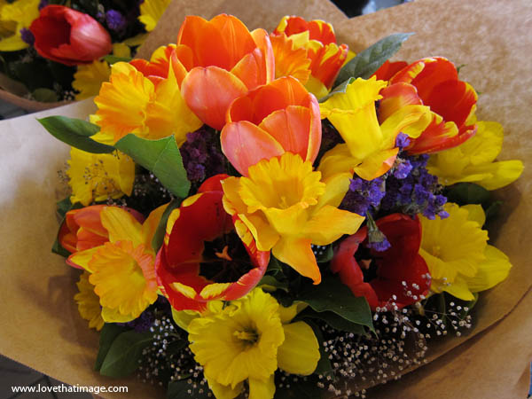 tulips, daffodils, salal, close up, macro, Pike Place Market, brown paper wrapper