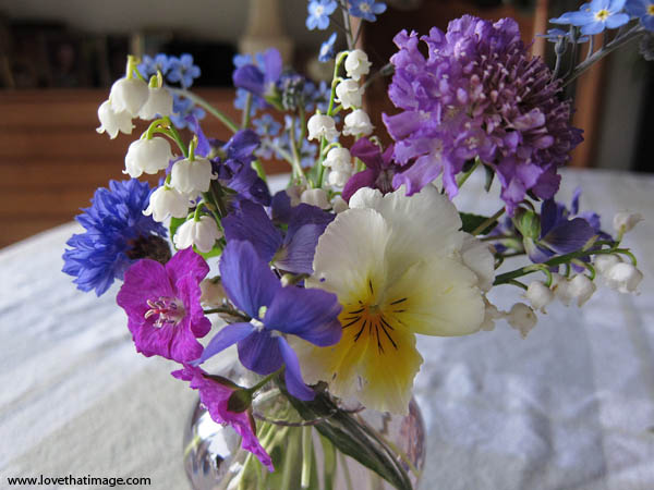 small spring flowers in glass vase, pansy, lily of the valley, forget-me-not, scabiosa