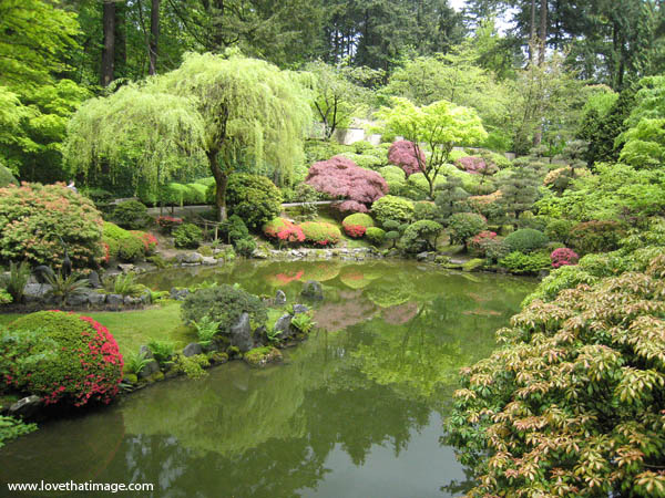 Portland Japanese Garden in Spring | Sara\'s Fave Photo Blog