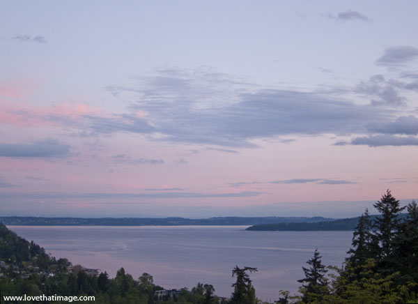 dusk, puget sound, trees, sunset, water view