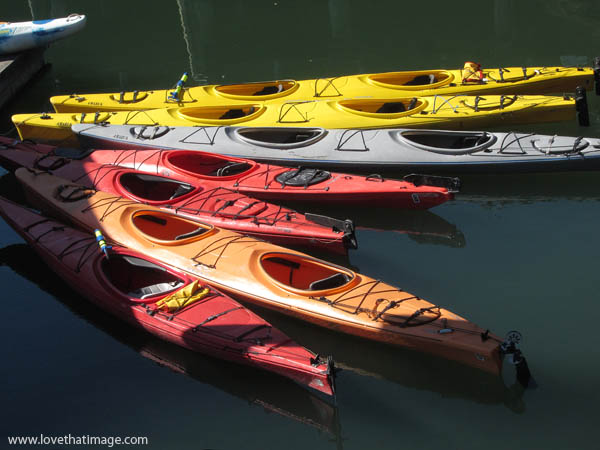orange kayak, yellow kayaks, red kayaks, rental kayaks in the water