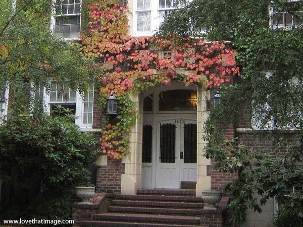 fall colors, ivy around doorway, brick building, autumn, scenic fall scene