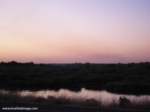 columbia river at dusk, columbia river at sunset, river grasses, smoky sky