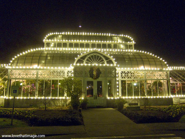 volunteer park conservatory, new lights, night lights at the Conservatory, seattle