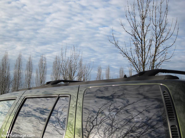 winter sky, clouds, bare branches, reflection in car window