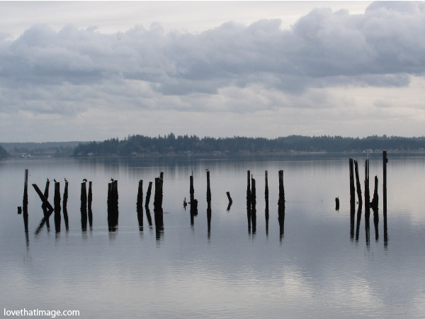 pilings reflected in still water, monochrome, black and white, dyes inlet, silverdale, washington, ghost pier