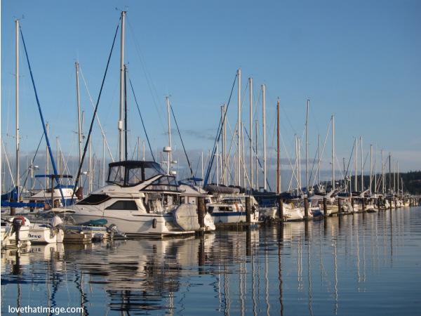 boats, sailboats, marina, sunny, water reflections, blue sky, cap sante, anacortes, washington
