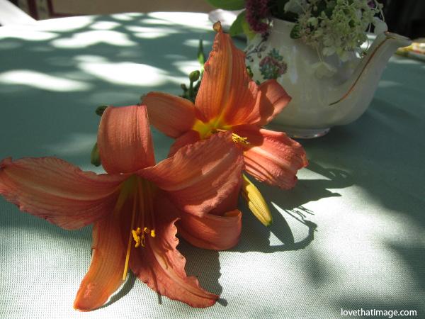 orange daylilies, shadows, garden tea, flowers on a table
