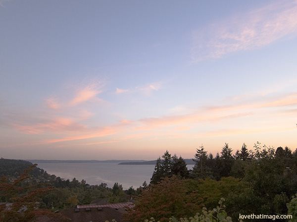 puget sound, evergreen trees, scenic view, dusk, vista, peaceful, tranquility
