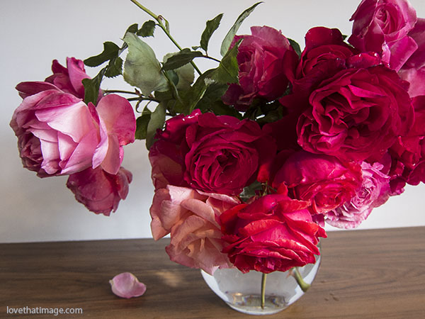 pink and white rose, red roses, bouquet, glass vase, garden roses