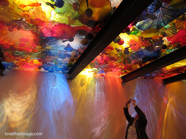 The glass ceiling of colorful blown glass forms at the Chihuly Museum in Seattle.