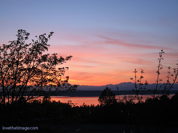 View of the Olympic Mountains and Puget Sound at sunset