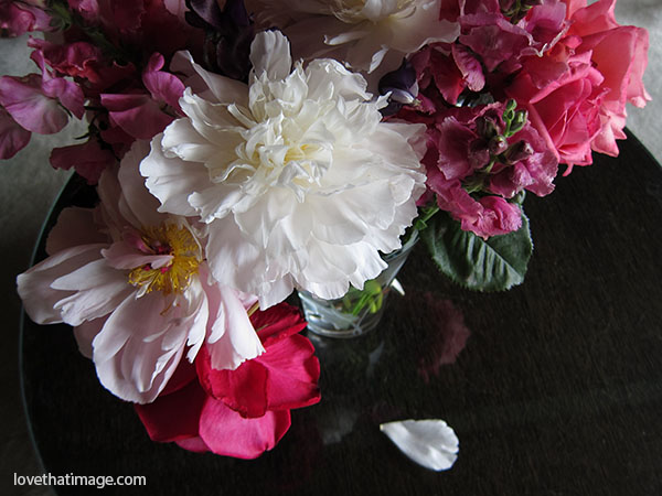 Bouquet with peonies, roses and snapdragons begins to fade