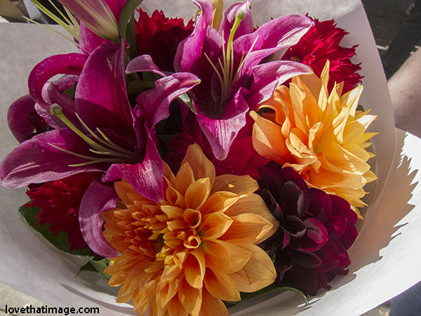 Brilliant dahlias and fragrant Oriental lilies in an early October bouquet
