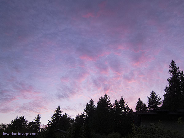 Sunset with colors in the sky, Pacific Northwest style