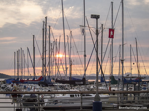 Boat masts at sunset in August