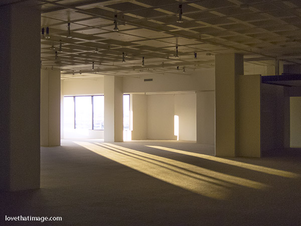 Late afternoon light pours into this commercial space needing a tenant