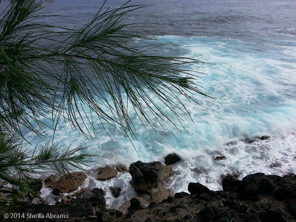 Turquoise water and lava rocks at the Hawaiian shore