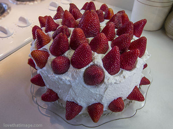 """Lots of fresh strawberries, real whipped cream, and a """"from scratch"""" sponge cake for a perfect birthday dessert"""