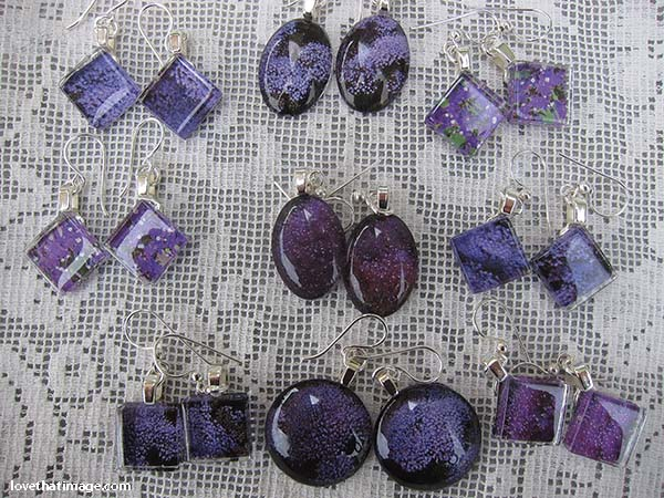Images of purple throatwort behind glass make very pretty earrings