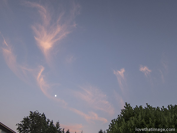 Cirrus clouds or mare's tails at sunset