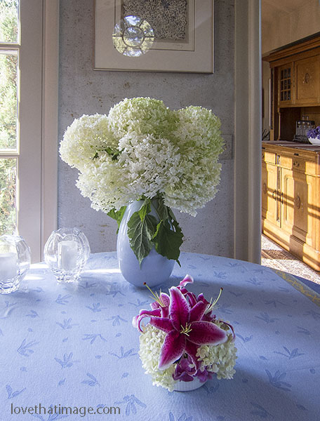 White hydrangeas in a vase and a stargazer lily blossom on a blue tablecloth