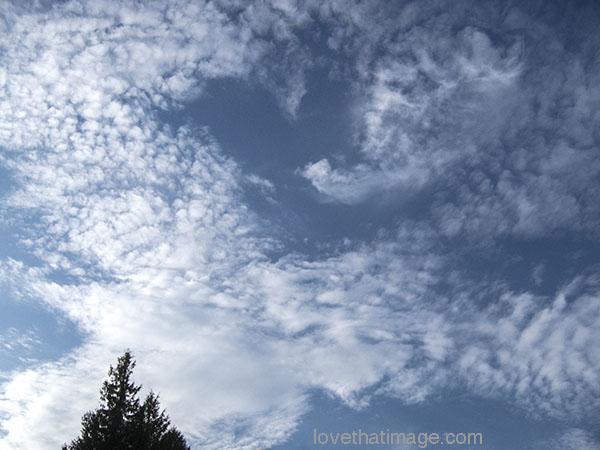 Swirly puffs of white clouds in a blue sky