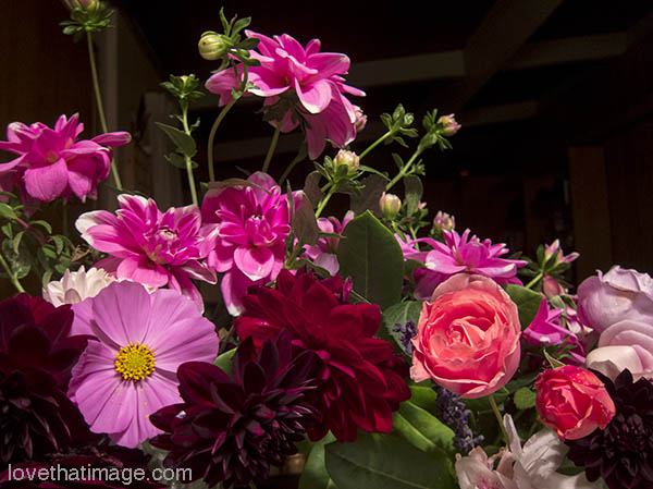 Dahlias, cosmos and roses in a late summer bouquet