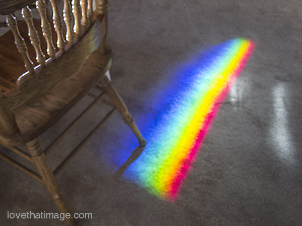 All the colors of the rainbow, on my dining room carpet