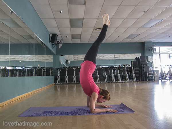 Woman balances inverted, supported on her forearms