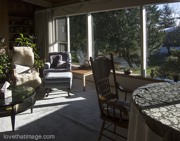 Winter sunshine pours in a south-facing window in Seattle