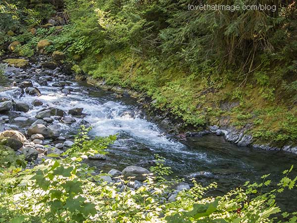 Water rushes over rocks in a creek on the Olympic Peninsula in summertime