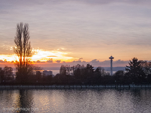 Sunset in Seattle with Space Needle, from Volunteer Park