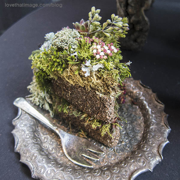 Here's a no-calorie version of a slice of chocolate cake, with flowers