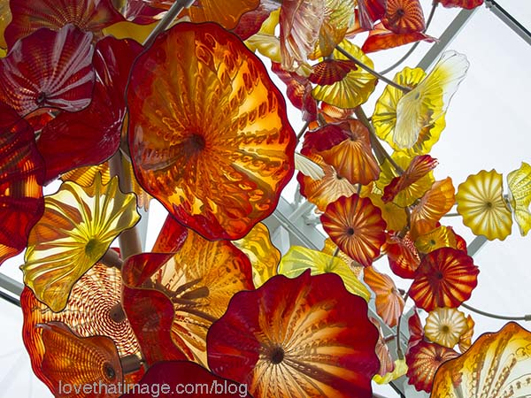 Undulating floral forms overhead in the atrium at the Chihuly glass garden in Seattle