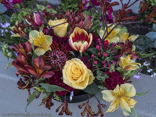 An array of red and yellow flowers including roses, tulips and alstroemeria or Peruvian lily