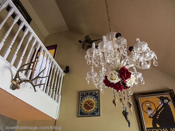 Antlers and roses and a chandelier decorate this living space filled with art