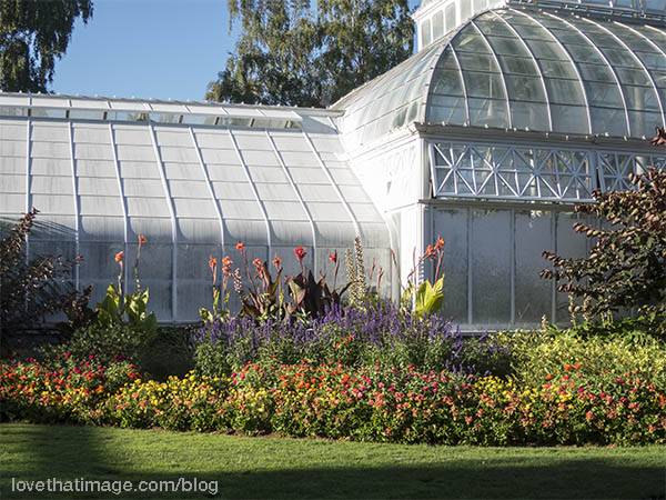 A rainbow of colorful flowers outside the beautiful Volunteer Park Conservatory