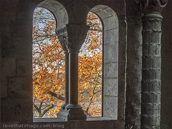 View of Hudson River and orange trees from the Cloisters in New York City