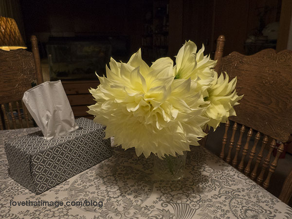 Bouquet of lemon yellow dahlias, about ten inches across